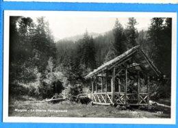 COV1204, Morgins, La Source Ferrugineuse, 4733, L. Paschoud, Circulée 1933 - VS Valais