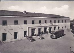 TERENTOLA - CORTONA - AREZZO - PIAZZALE ESTERNO DELLA STAZIONE FERROVIARIA - FIAT TOPOLINO GIARDINETTA - CORRIERA - Arezzo
