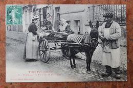 TOULOUSE (31) - TYPES TOULOUSAINS - MARCHANDE DE POISSON EN BALADEUSE - Toulouse