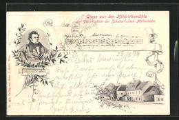 AK Hinterbrühl, Höldrichsmühle, Geburtsstätte Der Schubert`schen Müllerlieder - Austria