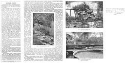 LES NENUPHARS Et Les LOTUS   1899 - D. Plantes Aquatiques