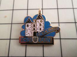115c Pin's Pins / Beau Et Rare / THEME : VILLES / ISSOUDUN AU COEUR DU BERRY Mais Pas Richard Ni Chuck ! - Cities