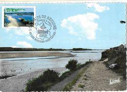 FRANCE -Carte Maximum Yv 4017-La Bohalie (49) Bords Loire-cad Les Rosiers 24 02 07 - Portraits De Régions - - Briefe U. Dokumente