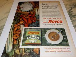 ANCIENNE PUBLICITE 6 LEGUMES DE ROYCO 1957 - Affiches