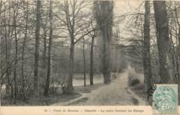 FORET DE MEUDON CHAVILLE LA ROUTE BORDANT LES ETANGS - Meudon