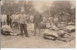 CPA Carte-photo WW1 Guerre 14-18 Rare Carte Groupe De Soldats Et Cadavres De Chevaux - War 1914-18