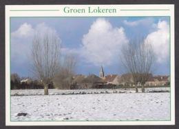 104875/ LOKEREN, Doorslaar In De Winter, Foto André Verstraeten, Uit *Groen Lokeren* - Lokeren