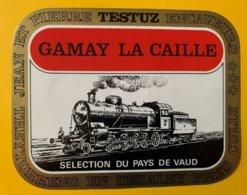 11665 - Locomotive à Vapeur Gamay La Caille Testuz - Treni