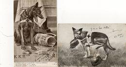 Guerre 14-18 .  Chien Loup - Chien Sanitaire Et Patriote - La Kultur Boche Pzar Le Pain K.K. -  Scan Du Verso. - Guerra 1914-18