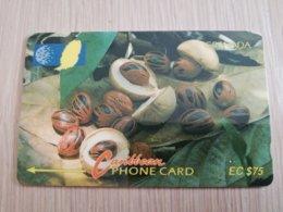 GRENADA  $ 75,- GPT GRE-6D  NUTMEG     MAGNETIC    Fine Used Card    **2239** - Grenada