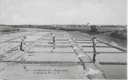 LA ROCHELLE - MARAIS SALANTS - LA RECOLTE DU SEL - BELLE ANIMATION - VERS 1900 - La Rochelle