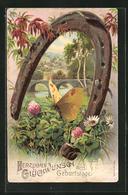 Präge-AK Schmetterling Und Hufeisen, Glückwunsch Zum Geburtstag - Insectes