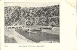 LE FLEUVE DU CHIEN A BEYROUTH RV - Libanon