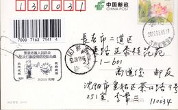 CHINA CHINE CINA POSTCARD LIAONING SHENGYANG  TO JILIN CHANGCHUN  WITH ANTI COVID-19 INFORMATION - China