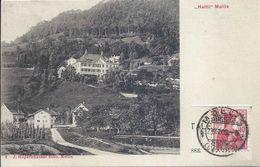 Mollis - Haltli             1909 - GL Glarus