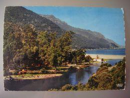 France - Corse (20) - PORTO ( Ota ) - Camping Au Bord Du Fleuve - Andere Gemeenten