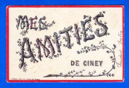 E-Belgique-451Ph74  Mes Amitiés De CINEY, Strass Sur Les Lettres, Cpa - Ciney