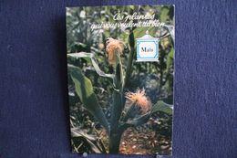 MO-228 -  Fleurs, Plantes & Arbres  Fleurs,  Ces Plantes Qui Vous Veulent Du Bien . Maïs  -  Circulé, - Heilpflanzen