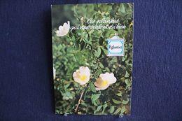 MO-357 -  Fleurs, Plantes & Arbres  Fleurs,  Ces Plantes Qui Vous Veulent Du Bien . Eglantier -  Circulé, - Heilpflanzen