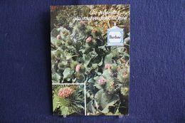 MO-361 -  Fleurs, Plantes & Arbres  Fleurs,  Ces Plantes Qui Vous Veulent Du Bien . Bardane  -  Circulé, - Heilpflanzen
