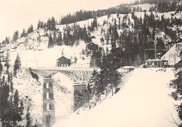 BVA  - Sur La Gryonne - Bex Villars Gryon Bretaye  - Ligne De Chemin De Fer -Train -  Ce 2/2 11 B.G.V - BGV - VD Vaud
