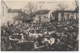88 XERTIGNY  La Foire Au Bétail - Xertigny