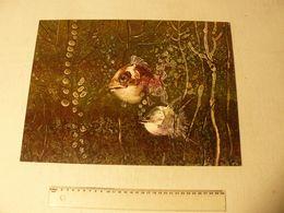 Lithographie De Lajos Sebök. Hongrois 1910/1996. Dim : 40 X 29.5 Cm. - Lithographies