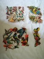 DIE CUT - SCRAP - DECOUPIS Gaufré / Embossed - Insectes Schäfer & Scheibe N°397 - Papillons - Oiseaux - Fleurs WH 3402 - Animals