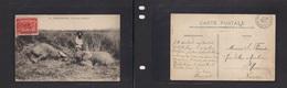 123gone. FRC French Congo 1903 Brazzaville To St Nazaire France Fkd Pcard Elephants Hunting. Easy Deal. - Frankreich (alte Kolonien Und Herrschaften)
