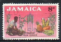 JAMAÏQUE. N°209 Oblitéré De 1963. Campagne Mondiale Contre La Faim. - Against Starve