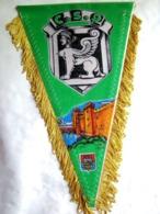 ANCIEN FANION CENTRE DE SELECTION N° 9 CS 9 ETAT EXCELLENT - Drapeaux