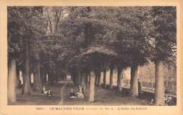 48 - LE MALZIEU-VILLE : L'Allée Du Foirail - CPA Village (740 Habitants ) Lozère - Autres Communes