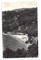 CPSM 83 LE RAYOL Lot 3 Cartes La Plage 1962 1964 Et Bord De Mer MAR - Rayol-Canadel-sur-Mer