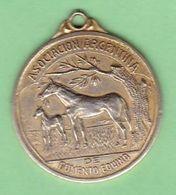 ASOCIACION ARGENTINA DE FOMENTO EQUINO, CIRCA 1960's ARGENTINA. CABALLOS CHEVAL HORSE MEDALLA MEDAL MEDAILLE -LILHU - Tokens & Medals