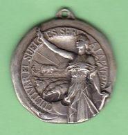 CULTIVAR EL SUELO ES SERVIR A LA PATRIA, SOCIEDAD RURAL ARGENTINA, AÑO 1924. AGRICULTURE MEDALLA MEDAL MEDAILLE -LILHU - Tokens & Medals
