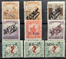 HUNGARY / TEMESVAR 1919 - MLH/canceled - Sc# 9N1-9N4, 9N4a, 9NB1, 9NJ1, 9NJ2, 9NJ3 - Temesvár