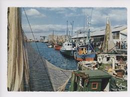 Saint Nazaire Le Port De Pêche (cp Vierge N°9203 Jos) - Saint Nazaire