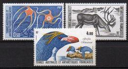 TAAF ( POSTE ) : Y&T  N° 122/124  TIMBRES  NEUFS  SANS  TRACE  DE  CHARNIERE, A  VOIR . R 1 - Terres Australes Et Antarctiques Françaises (TAAF)