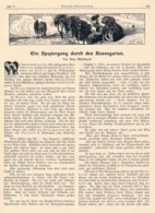 563 Anna Mittelstaedt Rosengarten Dolomiten Artikel Mit 4 Bildern 1902 !! - Libros, Revistas, Cómics