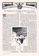 568-2 Hans Barth Cima Di Brenta Tosahütte Dolomiten Artikel Mit 10 Bildern 1904 !! - Libri, Riviste, Fumetti