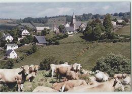 CPM 12 VIEURALS ... Vue Générale (Livenais 0889) Vaches - France