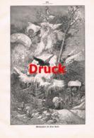 1864 Hermann Vogel Weihnachten Frau Holle Zwerge Druck 1901 !! - Estampes