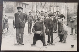 Carte Postal Timbrée - 2374 - Les Ours Du Pays - Ours
