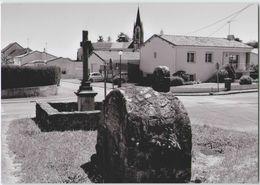 CPM 85 TREIZE VENTS ... La Vieille Fontaine Et La Croix Du Jubilé 1966 (Livenais MA190520) - Otros Municipios