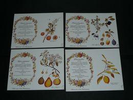 Lot 4 Calendriers Publicitaire, 1990, Pharmacie, Produits Pharmaceutiques Plantes Herboriste Fruits Poire Abricot Citron - Calendriers