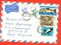 Bulgaria 1993. The Envelope  Passed The Mail. Airmail. - Bulgarien