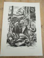 Reinaart De Vos 100 Expl 29 Op 20 Cm Waasland Gaudaen Gerard Vrijmetselarij - Lithographies