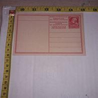 FB1662 AUSTRIA CARTOLINA DI CORRISPONDENZA KARTEN BRIEF 20 PARA APERTURA A LIBRO - Briefe U. Dokumente