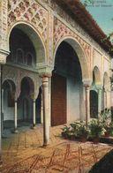 GRANADA. ALHAMBRA. GALERIA EN EL GENERALIFE - Granada