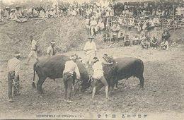 Toghukwai Of Uwajima, Bullfight - Giappone